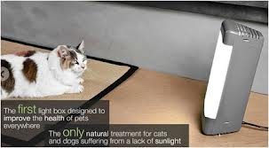 cAt light therapy