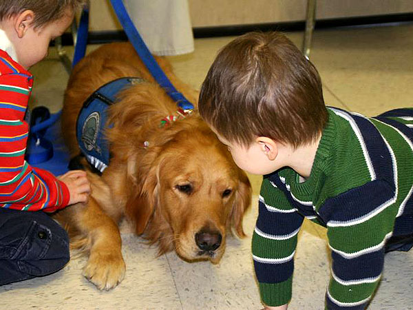 A comfort dog meets with children in Newtown, Conn.Courtesy K-9 Parish Comfort Dogs