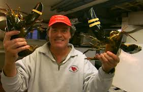 Man Holding Two Maine Lobsters